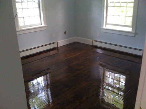 carey floors