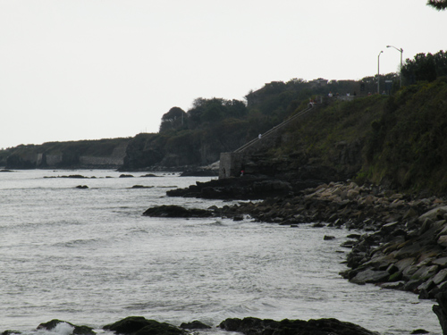 newport cliff walk photos