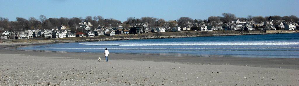Dog Beach Near Newport Ri
