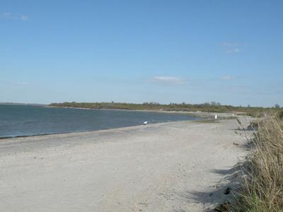 Best Newport Rhode Island Beaches