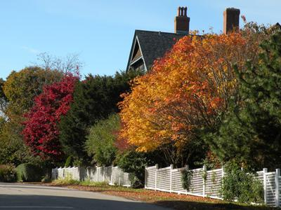 Exactly how you'd picture a sunny, Fall day in New England