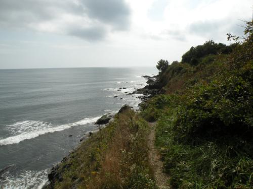 newport cliff walk photos