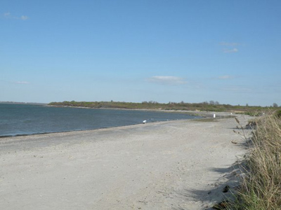 newport ri beaches