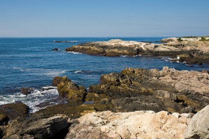 ocean drive newport
